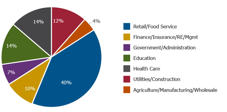 Circle graph showing breakdown of business types in Queen Creek